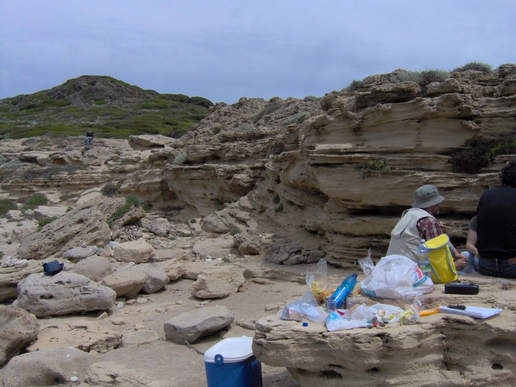 Depositi di spiaggia