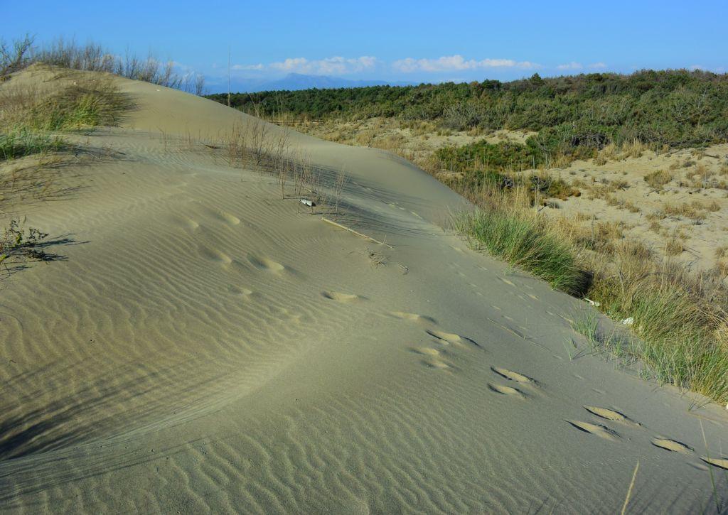 Spiaggia_16