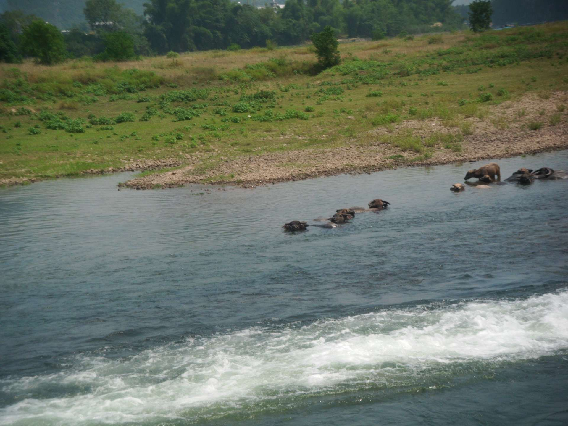 Li-river-ows