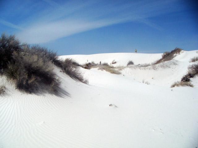 o-dune-field